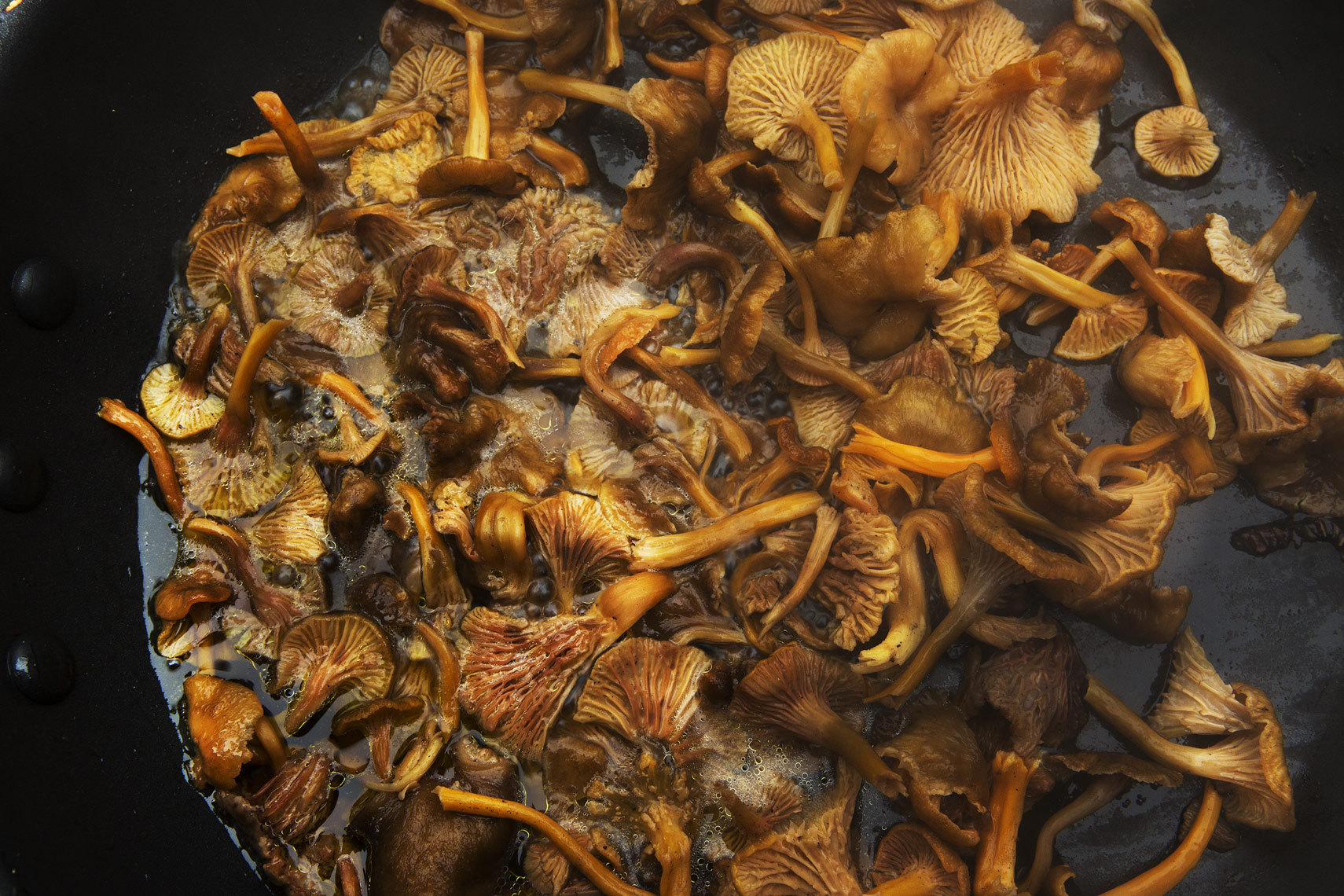 wild hedgehog mushrooms, Rose Hodges Food Photography, San Francisco
