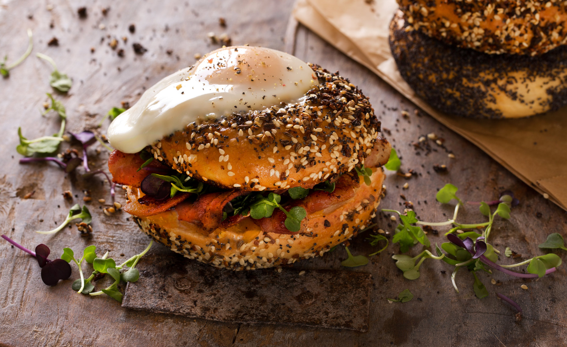 Everything Bagel and Egg, Rose Hodges Food Photography