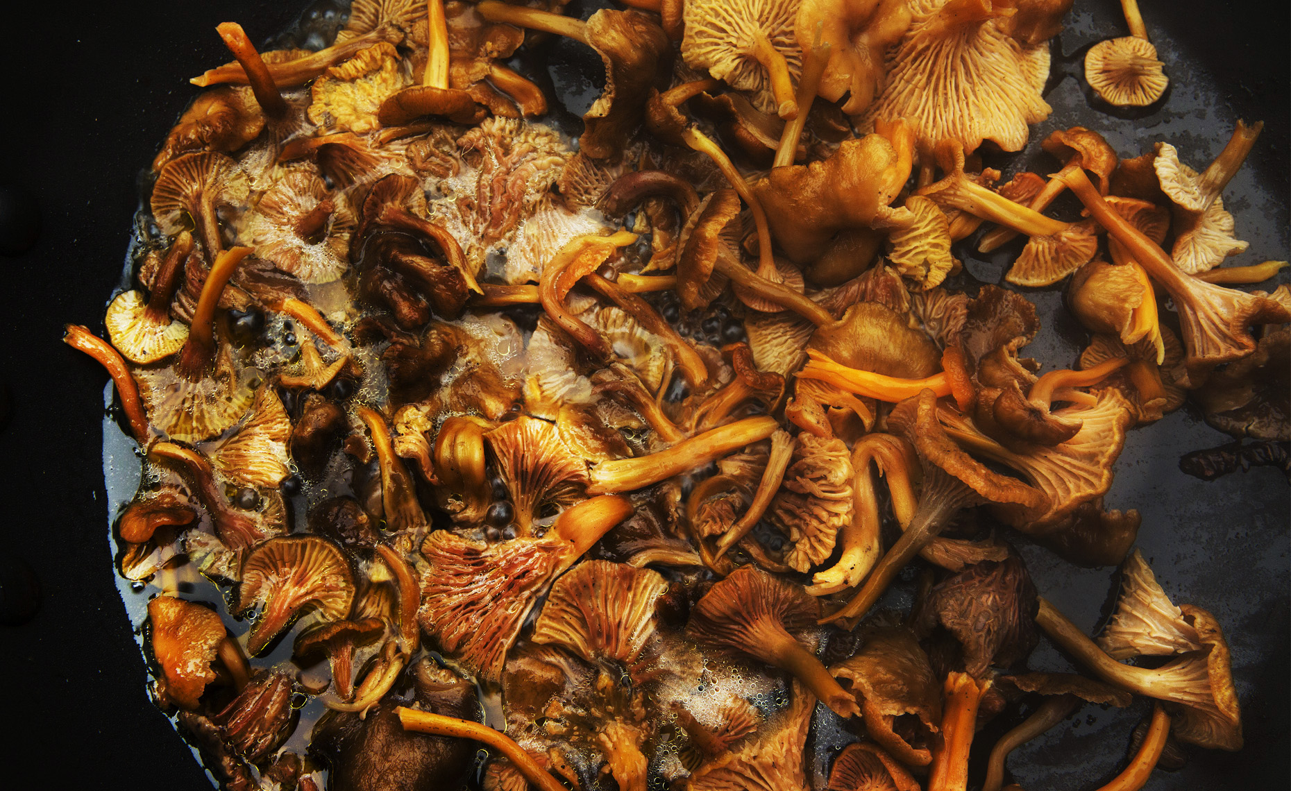 food  photographer, san francisco ,new york , Chicago, Wild Mushrooms